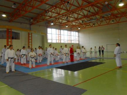 Cupa Good Dragon, un regal al karate-ului shotokan, la Marghita