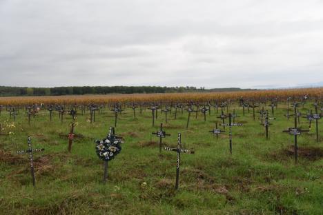 Singuri în moarte: În satul Dumbrava din Bihor a apărut un cimitir al oamenilor nimănui, cu peste 600 de morminte (FOTO / VIDEO)