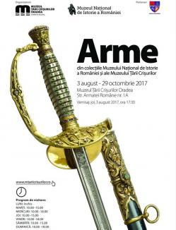 Pistoale, iatagane, săbii şi carabine de la Muzeul Naţional de Istorie, aduse la Oradea