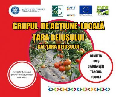 GAL Țara Beiușului anunță lansarea de cerere de proiecte LEADER pentru investiții în infrastructura rurală