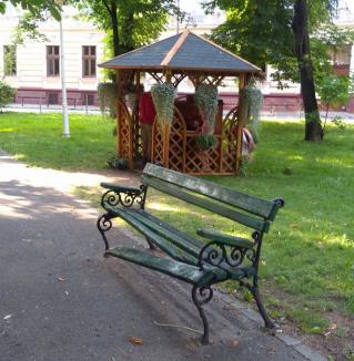 Ne enervează: Bancă ruptă, în Parcul Libertății