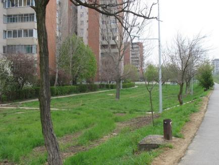 Spaţiul verde din zona Sovata se reamenajează