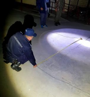 Trei bihoreni, cercetaţi pentru braconaj piscicol după ce au fost prinşi cu unelte ilegale