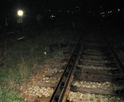 Un septuagenar a murit după ce a fost lovit de tren (FOTO)