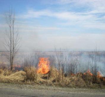 Atenţie la arderea resturilor vegetale în grădini şi livezi!
