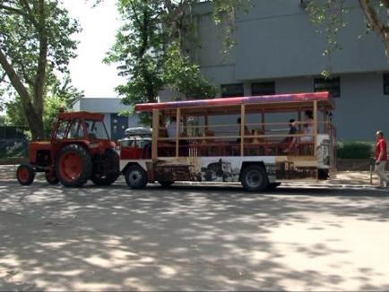 În fiecare weekend, orădenii se vor putea plimba cu omnibusul