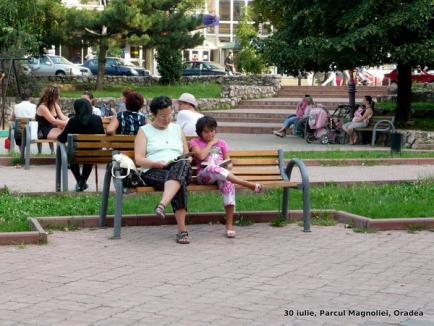 Primele Lecturi urbane din Oradea: de la manuale de franceză la romane de dragoste