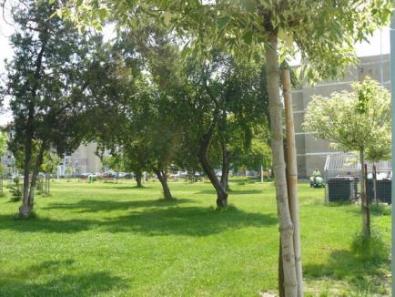 Amenjarea fostului cimitir Seleuş într-un parc cu toate utilităţile a luat sfârşit