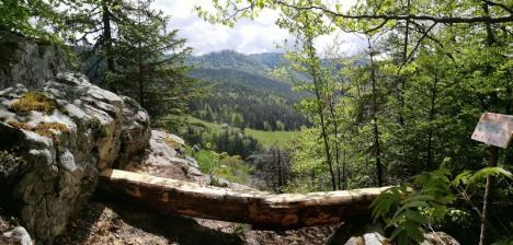 Reconectare la natură: Bihorenii pot descoperi, pe o hartă interactivă a Parcului Apuseni, locuri de relaxare, în mijlocul munţilor (FOTO / VIDEO)