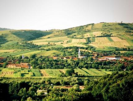 Spectacol folcloric la Zilele comunei Uileacu de Beiuş