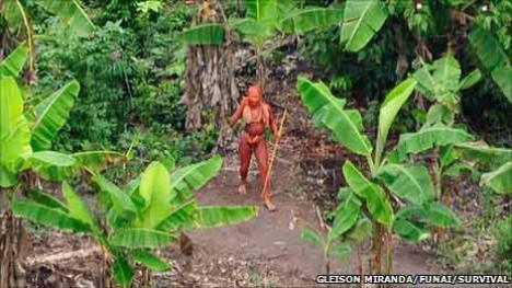 Rupţi de civilizaţie: un trib descoperit în Brazilia n-are nicio legătură cu societatea