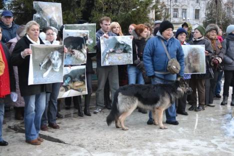 Protest cu lumânări: Voluntarii vor să poată intra în fiecare zi în adăpostul de câini (FOTO / VIDEO)