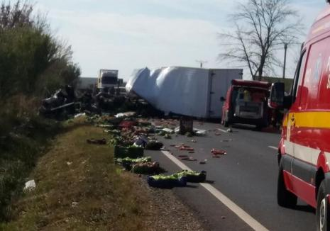Accidentul de la Nojorid a fost provocat de o depăşire neregulamentară. Şoferul nevinovat este în stare foarte gravă