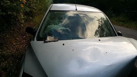 Un tânăr de 21 de ani, fără permis, a provocat un accident grav în Pădurea Neagră. Două persoane au ajuns la spital (FOTO)