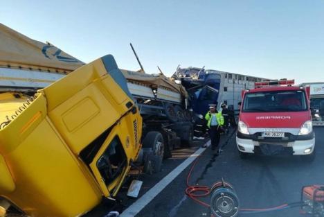 Accident devastator între Arad și Timișoara: Două TIR-uri s-au ciocnit, șoferii au murit (VIDEO)