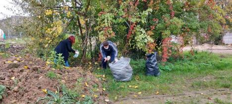Mai mulți studenți ai Universității din Oradea au strâns deşeurile aruncate pe malul pârâului Peța (FOTO)