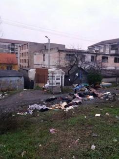 Poliţiştii locali au defiinţat un adăpost improvizat în spatele garajelor din strada Milcovului (FOTO)
