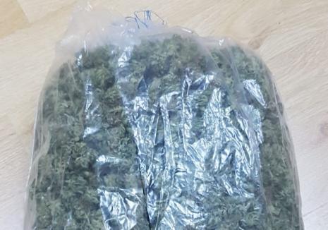 Campionul drogurilor: Detalii exclusive din dosarul de traficant de droguri al luptătorului K1 Adrian Maxim (FOTO)