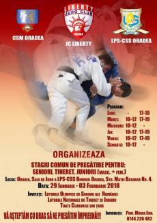'Crema' judo-ului masculin din România şi Ungaria se pregăteşte în această săptămână la Oradea