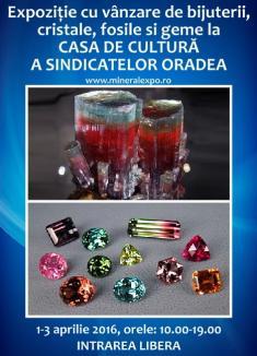 Mineral Expo la Oradea: Turmalinele, vedetele acestei ediţii