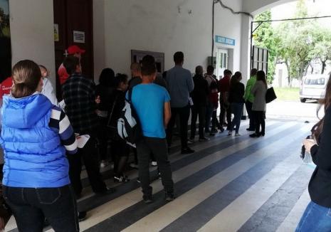 Poliţia Bihor a modificat programul ghişeelor pentru eliberarea certificatelor de cazier judiciar