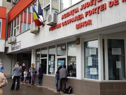 Piaţa muncii în Bihor: Peste 6.200 de şomeri şi mai puţin de 900 de joburi disponibile. Câţi bihoreni sunt în continuare în şomaj tehnic