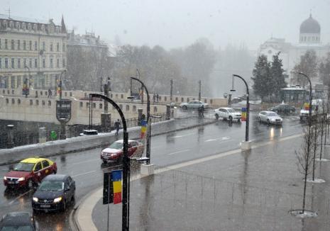 Alertă meteo pentru judeţul Bihor: se extind precipitaţiile şi se aşteaptă intensificări are vântului