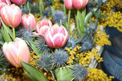 A sosit primăvara... de la Compania de Apă Oradea (FOTO)