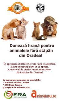 De Paşti, fii mai bun: Donează hrană pentru animalele fără stăpân!