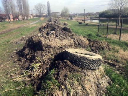 Ne enervează: Zeci de anvelope, aruncate de orădeni în pârâul Peţa (FOTO)