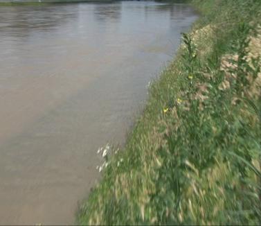 Mai multe râuri din Bihor au depăşit cotele de atenţie