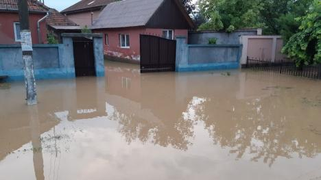 Apele fac ravagii în Bihor: În doar câteva ore, pompierii au avut 60 de misiuni de salvare a unor persoane, inclusiv copii, şi de evacuare a apei din gospodării (FOTO / VIDEO)