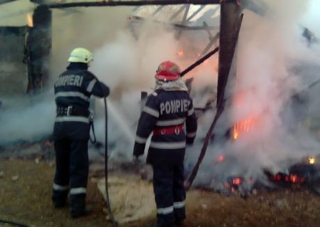 Incendiu în Oradea: O magazie din lemn s-a făcut scrum