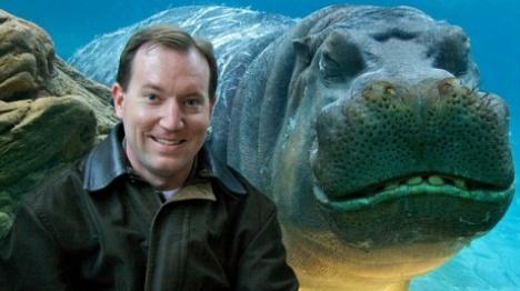 Hipopotamul zâmbicios: când vede bliţul, îşi arată dinţii