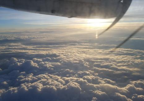 O nouă companie aeriană low cost va opera în Vestul ţării. Află despre cine este vorba!