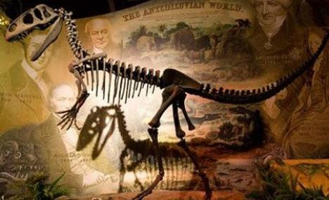 Balaurul bondoc: o nouă specie de dinozaur, descoperită în România