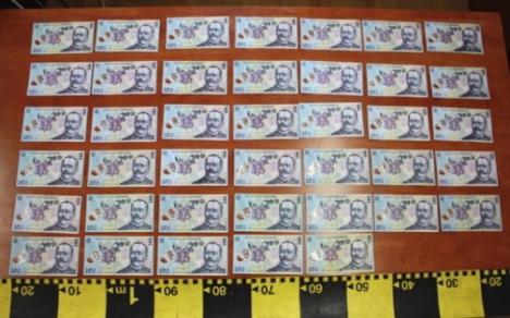 O grupare bihoreană a înşelat 25 de firme şi persoane, plătind mărfuri cu bancnote false
