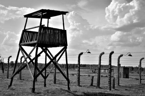 Cum vede o liceană din Oradea lagărul de la Auschwitz. Fotografiile elevei vor fi expuse la Sinagoga Sion (FOTO)
