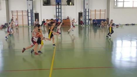 Echipa CN Teodor Neş Salonta s-a calificat la turneul final al  Olimpiadei Gimnaziale la baschet feminin (FOTO)