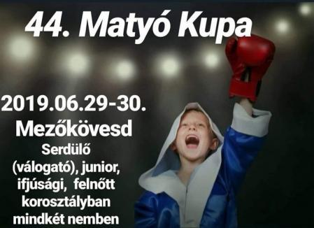Salontanii de la Basti Box se pregătesc în aceste zile în Ungaria, la Budapesta (FOTO / VIDEO)