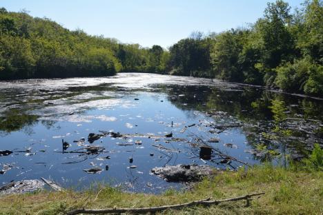 Două din nouă: Statul va începe ecologizarea a două depozite de deșeuri industriale din Bihor