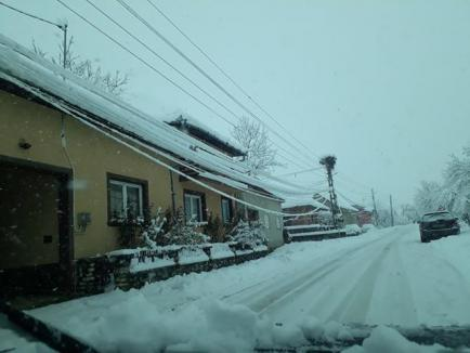 Şase şcoli şi o grădiniţă din Bihor vor fi închise luni, pentru că nu au curent