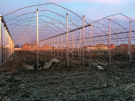 Luaţi exemplu! Agricultorii bihoreni au atras în judeţ 141 milioane euro (FOTO)
