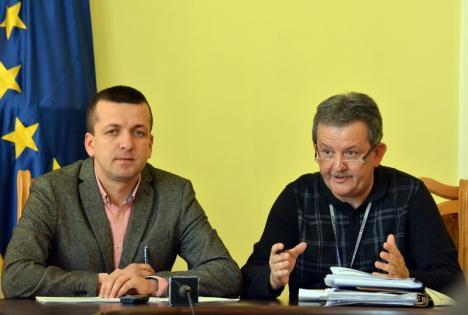 Drujbofonia: Primăria Oradea a tăiat anul trecut 939 de arbori şi a plantat de patru ori mai puţini!