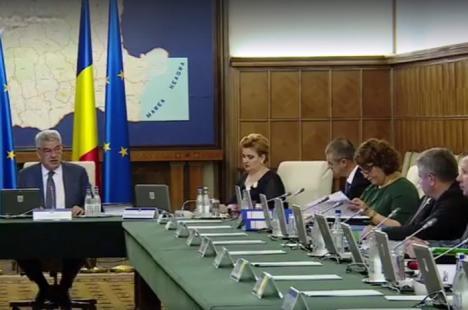 Bodog, iar în vizorul premierului: Ministrul Sănătăţii, certat la începutul şedinţei de Guvern pentru că 'sistemul este defect' (VIDEO)