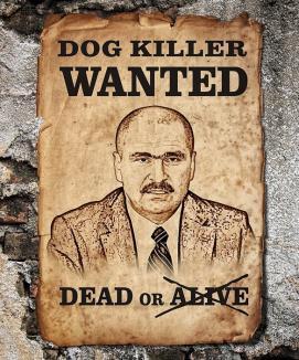 Bolojan, wanted!