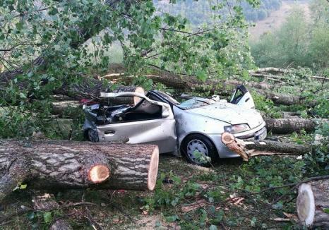 Imagini din campingul devastat de furtună din Bulz: Salvatorii au prezentat bilanţul primei intervenţii de Cod Roşu din Bihor (FOTO)