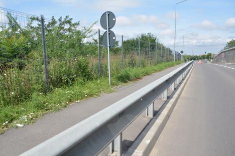 Ne enervează: Trotuarele de pe drumul expres sunt pline de buruieni (FOTO)