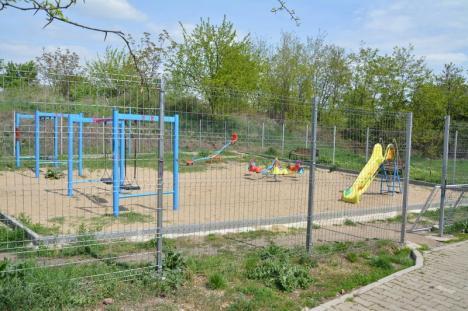 Parcul bălăriilor: Lângă un loc de joacă pentru copii din Oradea, şobolanii se plimbă în voie (FOTO)