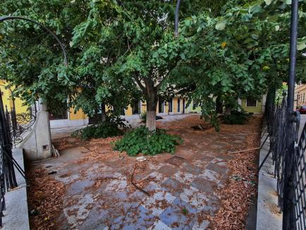 Butoiul cu... mizerii: Pe vremuri cea mai căutată grădină de vară din Oradea, terasa fostului hotel Rimanoczy strică aspectul zonei (FOTO)